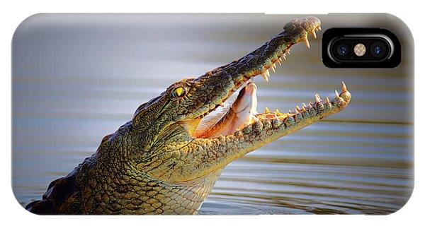 Swallow iPhone Case - Nile Crocodile Swollowing Fish by Johan Swanepoel