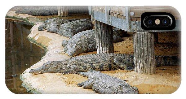 Crocodile iPhone Case - Nile Crocodiles At A Crocodile Farm by Pascal Goetgheluck/science Photo Library