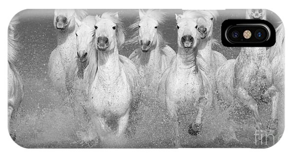 White Horse iPhone Case - Nine White Horses Run by Carol Walker