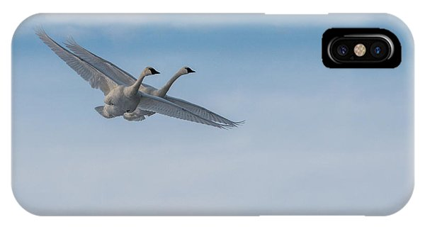 Trumpeter Swans Tandem Flight IPhone Case