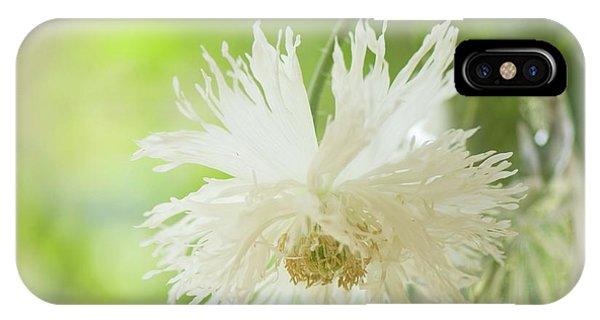 Cultivar iPhone Case - Nodding White Peony Poppy by Maria Mosolova