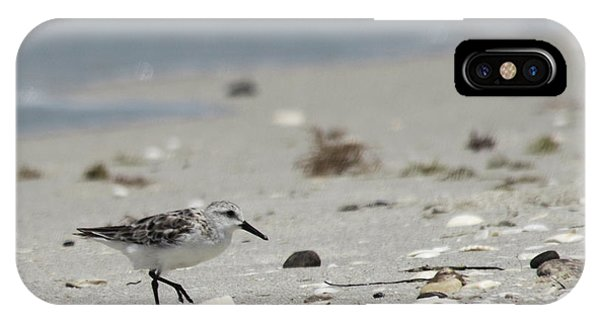 Nokomis Beach Piper IPhone Case