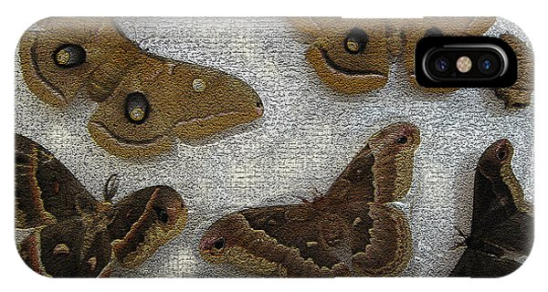 North American Large Moth Collection IPhone Case