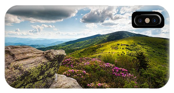 North Carolina Blue Ridge Mountains Roan Rhododendron Flowers Nc IPhone Case