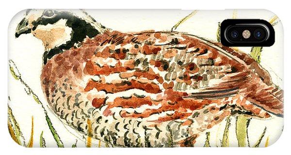 Bird Watercolor iPhone Case - Northern Bobwhite by Juan  Bosco