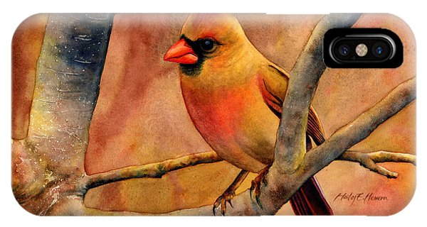 Bird Watercolor iPhone Case - Northern Cardinal II by Hailey E Herrera