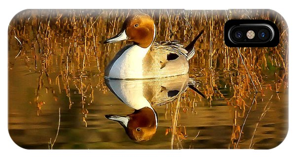 Northern Pintail Duck Phone Case by Thomas Kaestner