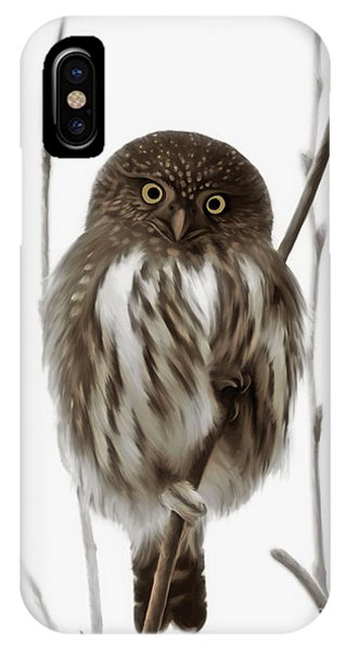 Northern Pygmy Owl - Little One IPhone Case