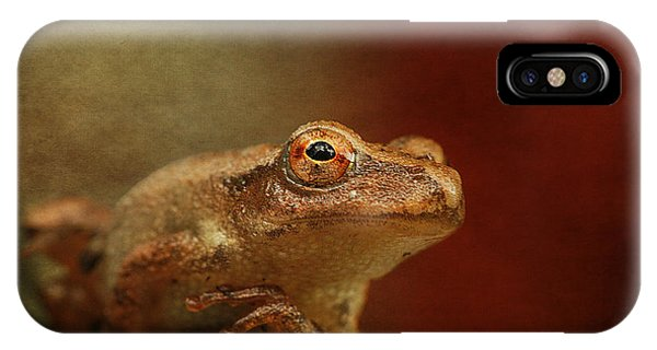 Northern Spring Peeper IPhone Case