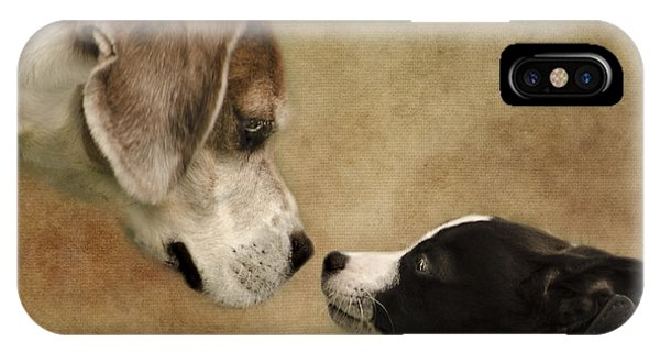 Nose To Nose Dogs IPhone Case