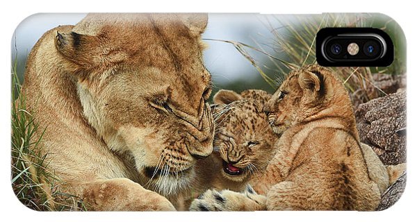 Nostalgia Lioness With Cubs Phone Case by Aziz Albagshi