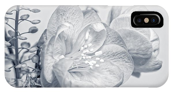 Not Quite Black And White IPhone Case
