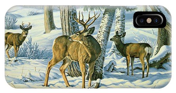 Mule Deer iPhone Case - Not This Year - Mule Deer by Paul Krapf