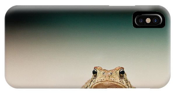 Amphibians iPhone Case - Nowhere Man by Annette Hugen