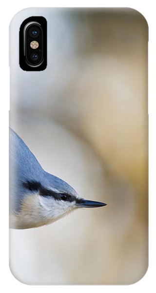 Nuthatch In The Classical Position IPhone Case