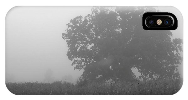Oak In The Fog IPhone Case