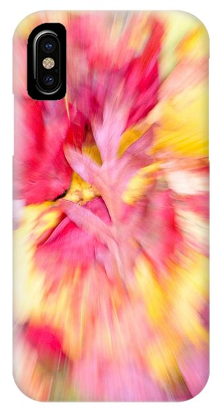 Oak Leaf With Autumn Foliage IPhone Case