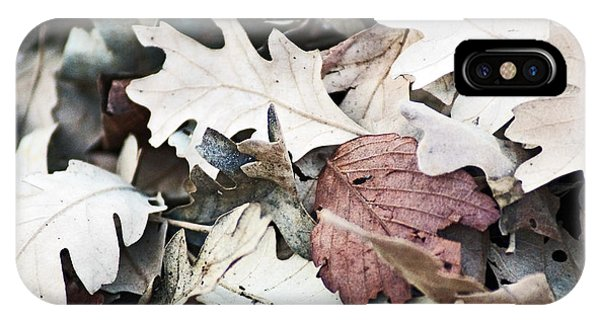 Oak Leaves In Fall IPhone Case