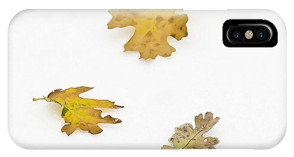 IPhone Case featuring the photograph Oak Leaves by Sherri Meyer