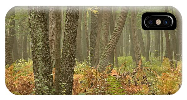 Oak Openings Fog Forest IPhone Case