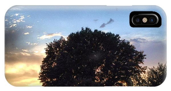 Oak Tree At The Magic Hour IPhone Case