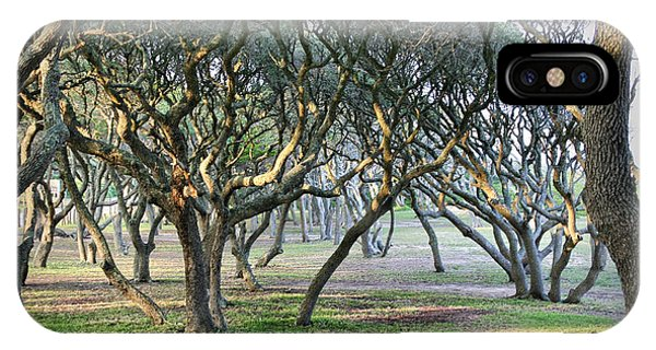 Oaks Of Fort Fisher IPhone Case
