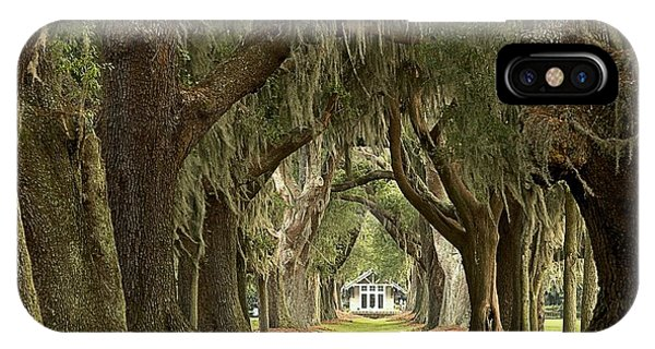 Oaks Of The Golden Isles IPhone Case