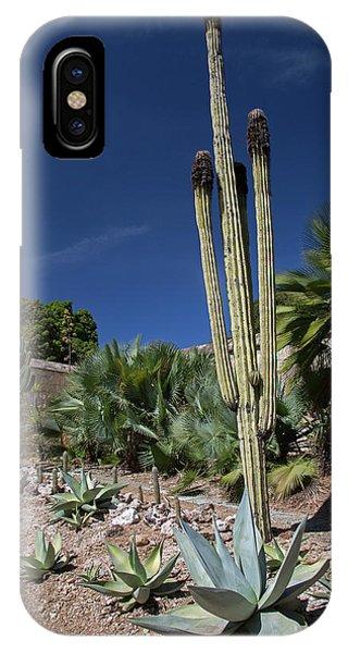 Adapted iPhone Case - Oaxaca Ethnobotanical Garden by Jim West