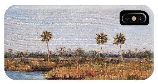 Ochlockonee River Palms IPhone Case