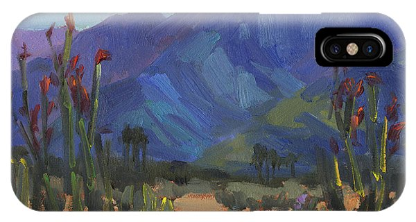 Ocotillos At Smoke Tree Ranch IPhone Case