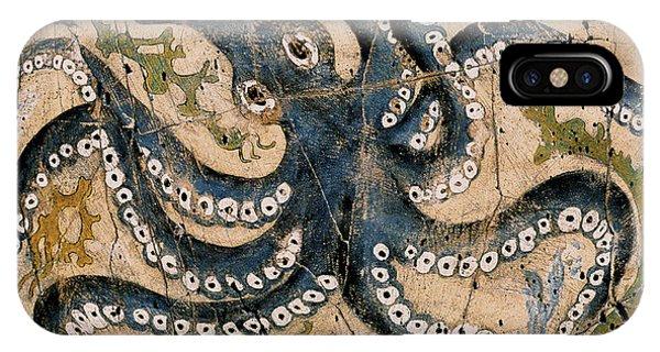 Bogdanoff iPhone Case - Octopus - Study No. 2 by Steve Bogdanoff