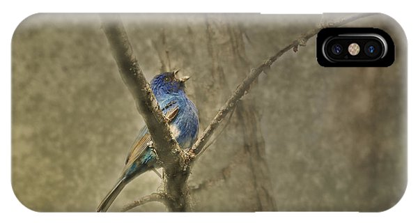 Migratory Birds iPhone Case - Ode To Spring by Susan Capuano