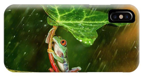 Frogs iPhone Case - Ohh Noo :( It's Raining by Kutub Uddin