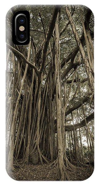 Old Banyan Tree IPhone Case