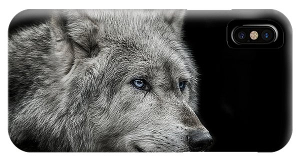 Wolf iPhone Case - Old Blue Eyes by Paul Neville