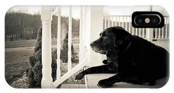 Old Dog On A Front Porch IPhone Case