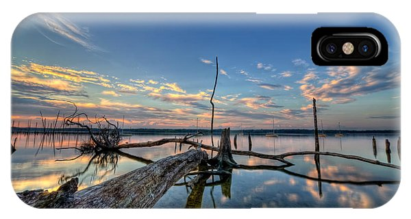 Nikon iPhone Case - Old Friends by Michael Ver Sprill