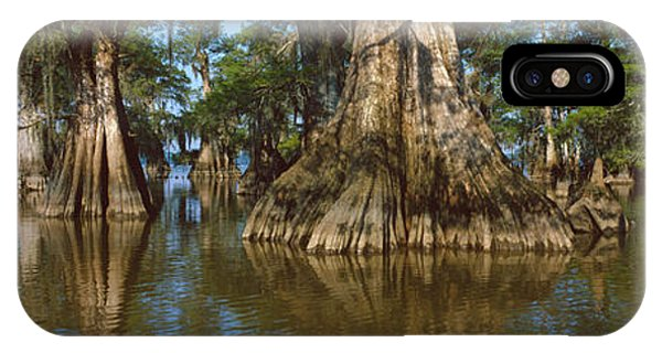 Bald Cypress iPhone Case - Old-growth Cypresses At Lake Fausse by Panoramic Images