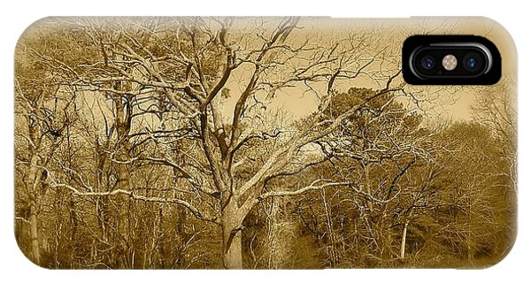 Old Haunted Tree In Sepia IPhone Case