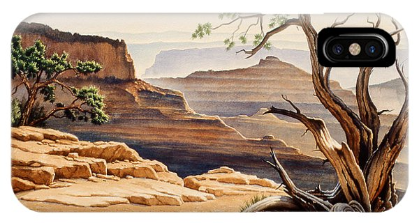 Grand Canyon iPhone Case - Old Tree At The Canyon by Paul Krapf