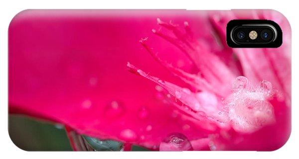iPhone Case - Oleander by Jared Shomo