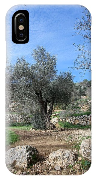 Olive Tree IPhone Case