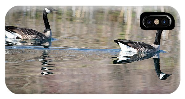 Canada Goose iPhone Case - On Golden Pond by Mike Dawson