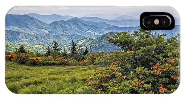 On Roan Mountain 10 IPhone Case