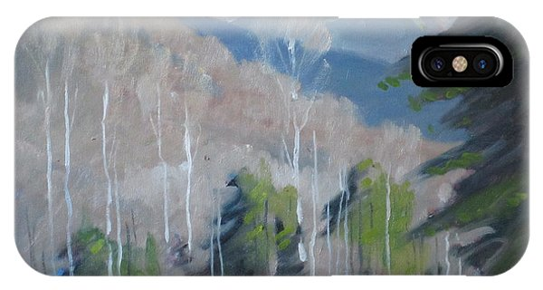 On The Ashuwillticook Rail Trail IPhone Case