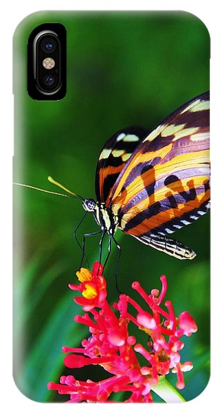 On The Wings Of Sweetness IPhone Case
