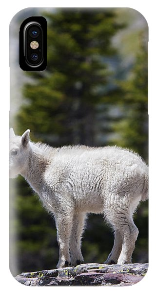 Goat iPhone Case - On Top Of The World by Mark Kiver