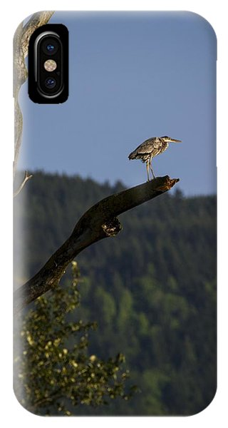 On Top Of The World IPhone Case