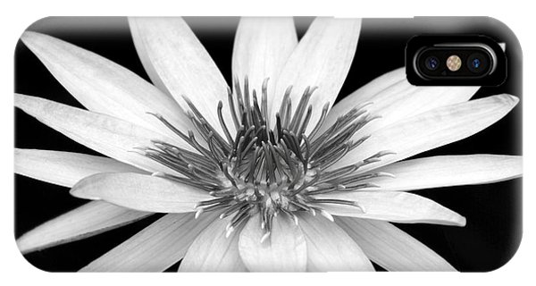 One Black And White Water Lily IPhone Case