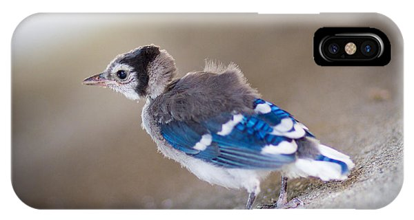one day...I will fly IPhone Case